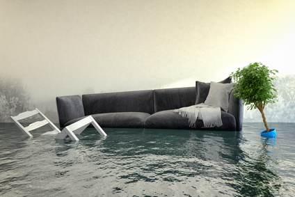 mietminderung wasserschaden in mietwohnung mieterengel. Black Bedroom Furniture Sets. Home Design Ideas
